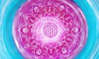Lebensblumenbild pink türkis mit Mandala
