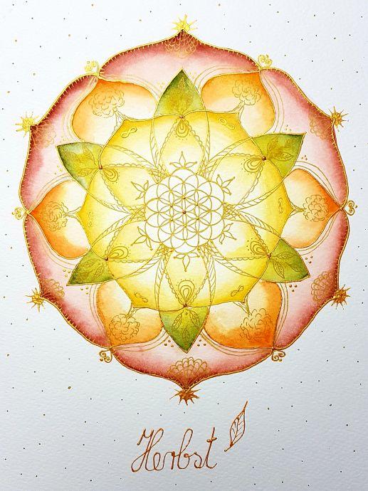 Herbst Lebensblumenbild