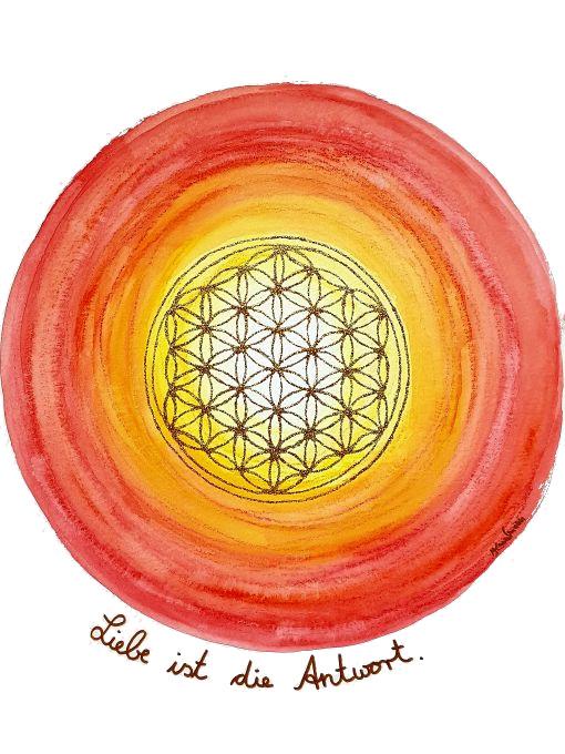 Liebe ist die Antwort Lebensblumenbild