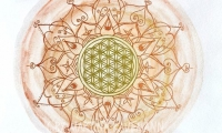 Lebensblumenbild, Aquarell, 24,5 x 24,5 cm